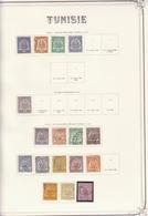 Classeur Timbres TUNISIE De 1888 à 1979 + PA + T+ CP + Préoblitérés + Blocs - Tunesien (1956-...)
