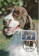 MAXIMUM CARD YUGOSLAVIA 1395,dogs - Maximum Cards