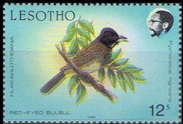 LESOTHO 1988 Birds Red Eyed Bulbul 12c ERROR:shift Black Right - Lesotho (1966-...)