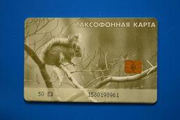 Magadan. Squirrel. 50 Un. - Russie