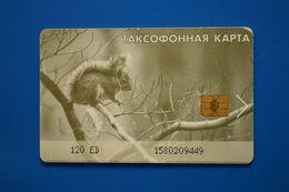 Magadan. Squirrel. 120 Un. - Russie