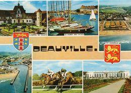 Hippisme Courses De Chevaux Champ De Courses PMU Hippodrome Jockey Deauville Voiliers - Hípica