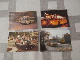 LOT Van 16 Postkaarten + 1 Foto BUS - Bus & Autocars