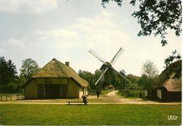 Openluchtmuseum Domein BOKRIJK (Genk). Standaardmolen Uit Mol-Millegem (1788), Boerenhuis Uit Vorselaar (16è)........... - Musées