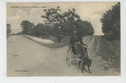 BRIARE - La Poste En Voiture à Chien - Briare