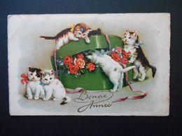 Petits Chats Jouant Avec Boîte Pleine De Roses - N° 549 - Chats