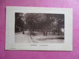 CPA 47 LAVARDAC LES PROMENADES - Lavardac