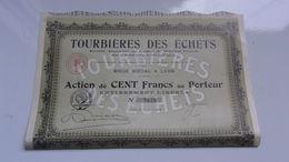 TOURBIERES DES ECHETS (1918) LYON - Actions & Titres