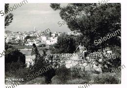 CROCIERA MOTO NAVE ANNA C - Ship Boat - Fotografia Originale Tagazza Girl Pin Up Greece Grecia - Bateaux