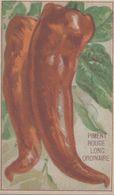 CHROMO - IMAGE  LEGUME  PIMENT ROUGE LONG ORDINAIRE - Trade Cards