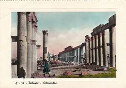 SYRIA - Palmyre - Colonnades - Syrie