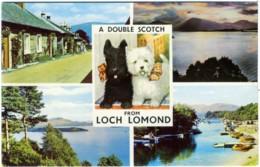 INVERBEG  SCOTLAND  Loch Lomond  Multiview  Dog  Poodle Toy - Argyllshire