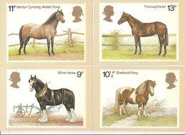 GB GREAT BRITAIN 1978 MINT PHQ CARDS HORSES No 30 SHIRE HORSE SHETLAND PONY WELSH PONY THOROUGHBRED PLOUGH CYMREIG - 1952-.... (Elizabeth II)