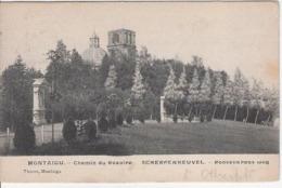 Roosenkransweg 1906 - Scherpenheuvel-Zichem