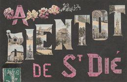 88 - SAINT DIE - A Bientôt De Saint Dié - Saint Die