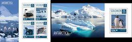 Salomon 2014, Animals In Antartica, Penguins, 4val In BF+BF - Faune Antarctique