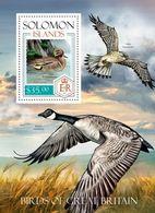 Salomon 2014, Animals, Birds, Duck, Falcon, BF - Ducks