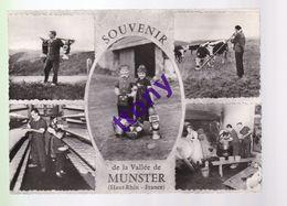 Cpm : Souvenir De La Vallée De Munster : Carte Multi-vue  Carte écrite Année 1959 - Munster