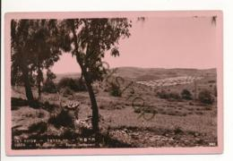 Haifa - Mt Carmel [Z08-1.768 - Israele