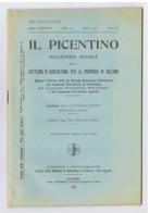 SALERNO - IL PICENTINO - BOLLETTINO MENSILE DELLA CATTEDRA DI AGRICOLTURA - MARZO 1932 - Bücher, Zeitschriften, Comics