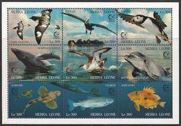 1995 Sierra Leone SINGAPORE'95: Marine Birds, Marine Mammals, Fish Minisheet (** / MNH / UMM) - Albatrosse & Sturmvögel