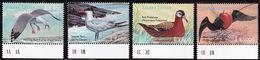 2000 Sierra Leone Sea Birds Of The World Set, Minisheet And Souvenir Sheets (** / MNH / UMM) - Albatrosse & Sturmvögel