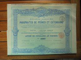 BELGIQUE - BRUXELLES 1891 - PHOSPHATES DE PERNES ET EXTENTIONS - ACTION DE JOUISSANCE - Shareholdings