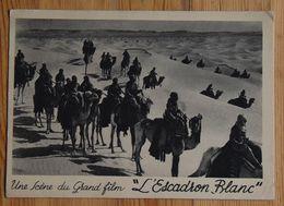 Une Scène Du Grand Film L'escadron Blanc - Caravane De Dromadaires Dans Le Désert - Cinéma - Film De R. Chanas (n°18042) - Cinema