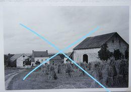 Photo MESNIL EGLISE Mesnil-Eglise Région Houyet Mahoux Wiesme Finnevaux Ferme De Ferage Fenaisons 1936 - Plaatsen