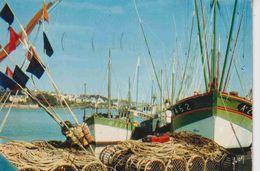 29 AUDIERNE Port De Pêche Sur La Côte Bretonne ; Chalutiers, Casiers (immatriculation Qui Donne Le Lieu) - Audierne