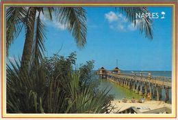Naples - La Jétée De Pêche - Naples