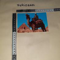 C-93843 GIZA CAMEL DRIVER NEAR THE SPHINX AND KHAFRE PYRAMID - Egypt