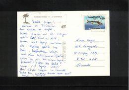 Tunisia  Interesting Postcard - Tunesien (1956-...)