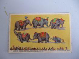 Dumbo Numero 7 - Other