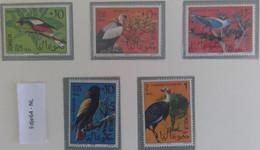 1966 Somalië Vogels - Somalia (1960-...)