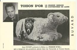 BUVARD ANCIEN / COUVERTURE DE LAINE TOISON D'OR - Buvards, Protège-cahiers Illustrés