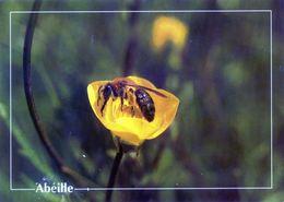CPSm   Abeille (1996-pierron) - Insectos