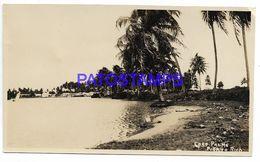 136977 PUERTO RICO VIEW PARTIAL COCO PALMS PHOTO NO POSTAL POSTCARD - Cartes Postales