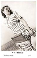 GENE TIERNEY - Film Star Pin Up PHOTO POSTCARD - 1/531 Swiftsure Postcard - Cartes Postales