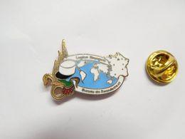 Beau Pin's En EGF , Armée Militaire ,  Légion Etrangére , Bureau De Recrutement , ATTENTION : Pin's Décoloré - Army