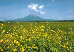 2 AK Japan * Mt. Daisen Ein 1729 Meter Hoher Vulkan Im Zentrum Des Daisen-Oki-Nationalparks * - Japón