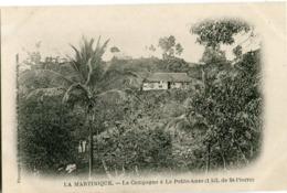 LA MARTINIQUE - LA CAMPAGNE à LA PETITE ANSE (1 Kil. De St PIERRE) - - Martinique