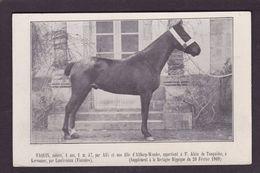 CPA Hippisme Cheval Horse Bretagne Non Circulé Finistère Kervoanec Landivisiau - Hípica
