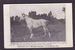 CPA Hippisme Cheval Horse Bretagne Non Circulé Finistère Guiclan - Hípica