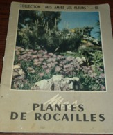 Plantes De Rocaille - Collection Mes Amies Les Fleurs - 1954 - Garten