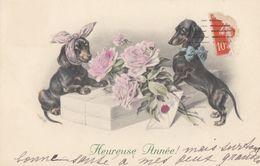 CPA (chiens ) Teckel (boite2)  M M VIENNE M Munk N°766 - Hunde