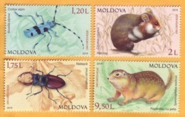 2019 Moldova Moldavie Red Book. Beetles, Gopher, Hamster. - Moldawien (Moldau)