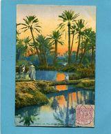 MAROC -1913 Carte Pont De Palmiers -oasis *-Affranchissement Poste Chérifienne 1913  -pour Françe - Locals & Carriers