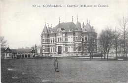 Gosselies NA31: Château Du Baron De Crawez - Charleroi