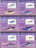A{101} Comoros 2009 Dolphins 6 S/S Deluxe MNH** - Isole Comore (1975-...)